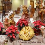 Christmas Mass - 12 Noon - Live Stream
